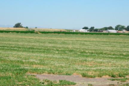 Voorhees/Silva Farm