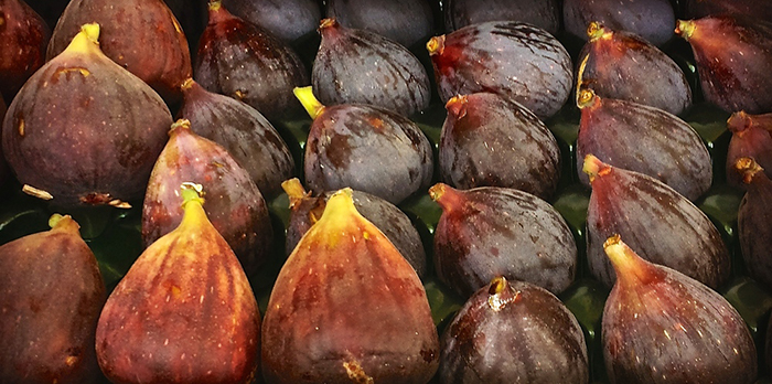CA Figs Month!!