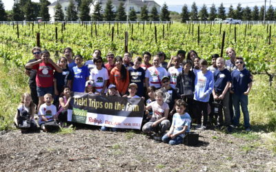 Raley's Field Trip on the Farm – Ms. Griggs