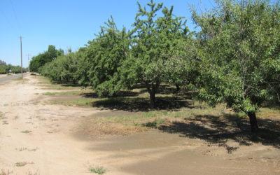 Koehn Farm