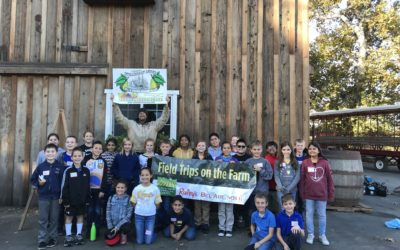 Raley's Field Trips on the Farm – Ms. Swartwood
