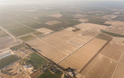Alvernaz Farm