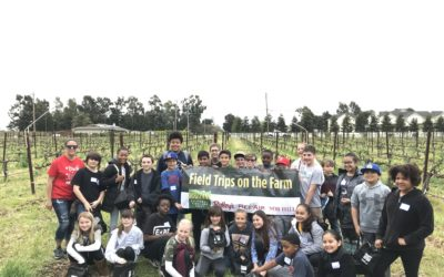 Raley's Field Trips on the Farm – Ms. Golinveaux