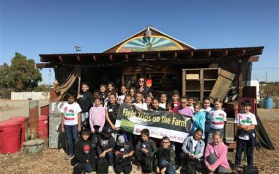 Raley's Field Trips on the Farm – Ms. Ostlund